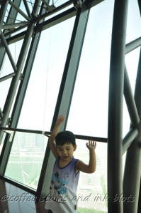 macau tower observatory